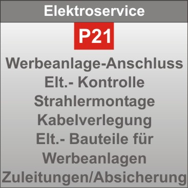 P21-Elektroservice